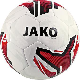 JAKO formation Ball champion