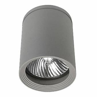 1 Luce All'aperto Superficie montato Soffitto Grigio chiaro Ip54