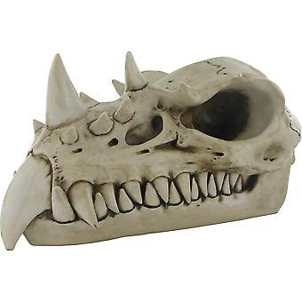 Dragon Skull Realistic Bone  Ornament 14cm