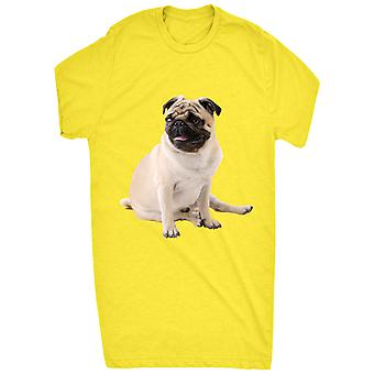 Renowned Cute Pug Sitting Down