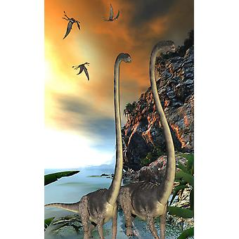 Two Omeisaurus dinosaurs walking along a steep cliff Poster Print by Corey FordStocktrek Images