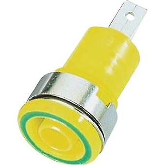 Stäubli SLB4-F/שקע בטיחות socket שקע, מובנה ירוק, צהוב 1 pc (עם)