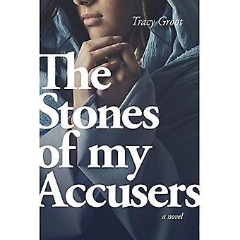 Steinene i mine anklagere