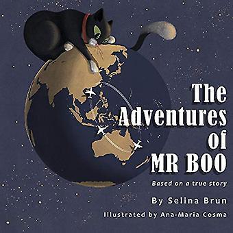 Die Abenteuer des Herrn Boo