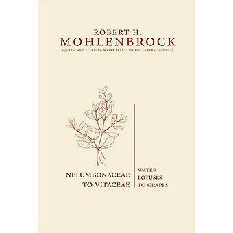 Nelumbonaceae à Vitaceae-lotuses d'eau à raisins par Robert H. Mohle