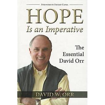 Hoop is een absolute must - de essentiële David Orr door David W. Orr - 9781
