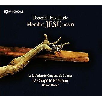 Membra Jesu Nostri [CD] USA import