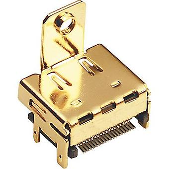 BKL Electronic 0907010 HDMI connector Socket, horizontal mount Number of pins: 19 Gold 1 pc(s)