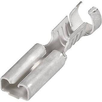 Receptáculo TE conectividad 1-160304-8 cuchilla ancho conector: 6,3 mm conector espesor: 0,8 mm 180 ° no aislada 1 PC