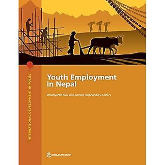 Jugendbeschäftigung in Nepal (internationale Entwicklung im Fokus)