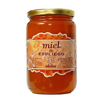 عسل اللافندر 1 كجم