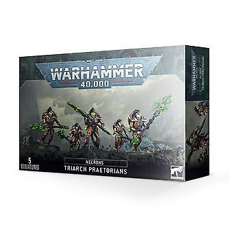 Warhammer 40,000 -  Necrons - Triarch Praetorians
