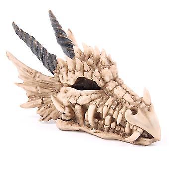 Skarbonki czaszki smoka
