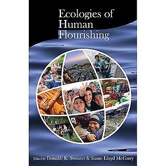 Ökologie der menschlichen Entwicklung