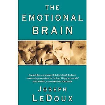 De emotionele hersenen: De mysterieuze onderbouwing van emotionele leven