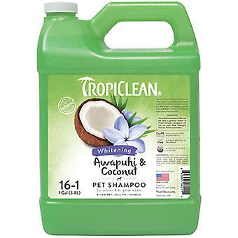 TropiClean Champú Awapuhi y Coco 3,78 L (Cani , Toelettatura ed igiene , Shampoo)