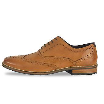 Avant Austin Fr7395 Brogue Shoe