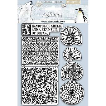 Stamperia Naturstempel Stamp Arktis Antarktis Muscheln