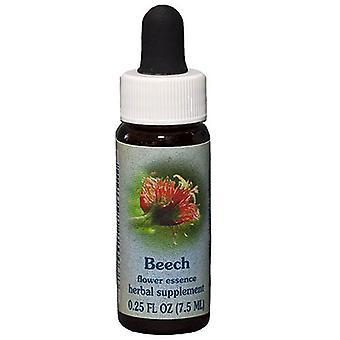 Flower Essence Tjänster Beech Dropper, 0,25 oz