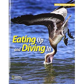 ROYO READERS LEVEL B EATING UP AND DIVING IN