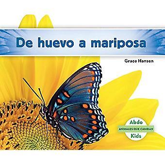 de Huevo a Mariposa (Becoming a Butterfly) by Grace Hansen - 97816240