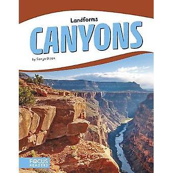 Landforms - Canyons by Landforms - Canyons - 9781635179910 Book