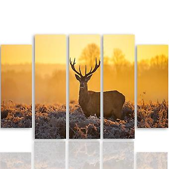Five Part Picture On Canvas, Pentaptych, Type B, Deer Sunset 2