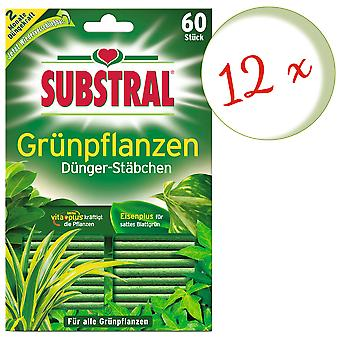 Sparset: 12 x SUBSTRAL® fertilizer rods for green plants, 60 pieces
