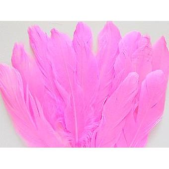 LAST FEW - 12 Cerise Pink 16cm Quill Feathers for Crafts