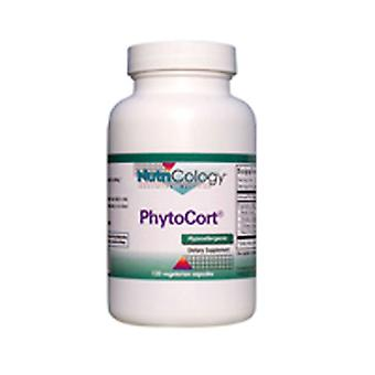 Nutricologie/ Allergie Onderzoeksgroep Phytocort, 120 Cap