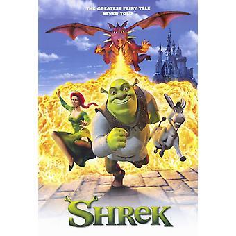 Shrek film affisch Skriv (27 x 40)