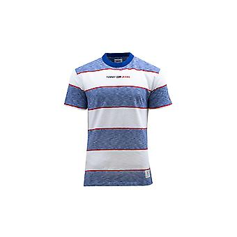 Tommy Hilfiger DM0DM10285C65   men t-shirt