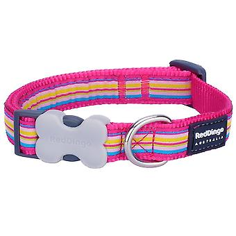 Pet leashes red dingo stripe dog collar  small  hot pink