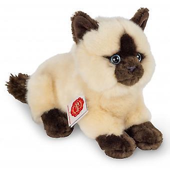 Hermann Teddy klem Cat Siamese løgn