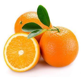 Sticker sticker auto moto deco fruit oranje keuken frigo