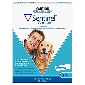 Sentinel taajuuksien suuri koira 3 kpl