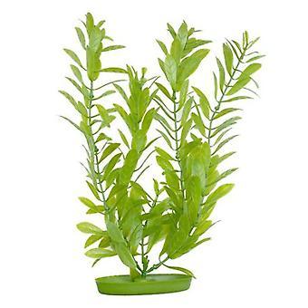 Marina AQUASCAPER Med.  HYGROPHILA 20 cm (Fish , Decoration , Artificitial Plants)