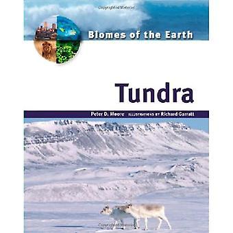 Tundra (biom av jorden)