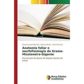 Anatomia foliar e morfofisiologia de GramaMissioneiraGigante by Lajs Reschke Cristiano