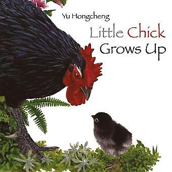 Little Chick Grows Up by Yu Hongcheng - 9789888342020 Book