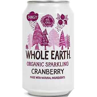 Whole Earth Organic Cranberry Drink 330ml x24