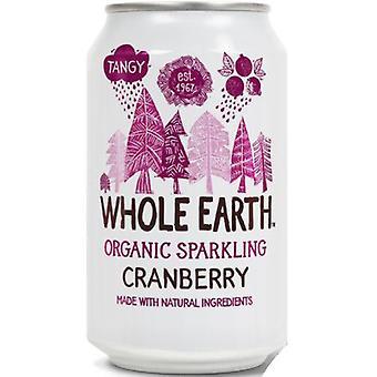 Ganze Erde Bio Cranberry Drink 330ml x24