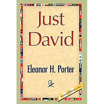 Just David by Eleanor H Porter - 9781421894270 Book