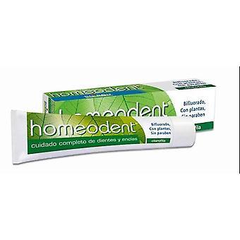 Boiron Homeodent 2 Bifluore Clorofila 75 ml