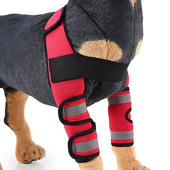 Mimigo Haustierbedarf mit reflektierenden Streifen-Hund Vorderbeinspangen Karpal Unterstützung Hock Gelenk, Kreuzband, Wundheilung und Verlust der Stabilität von