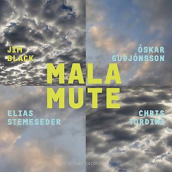 Black*Jim / Guojonsson*Oskar / Tordini*Chris - Malamute [CD] USA import