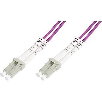 Cabo FOC fibreglass digitus [plugue LC 1x - 1x plug ue LC] 50/125 μ Multimode OM4 5.00 m