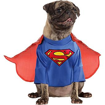 Superman psích kostýmů