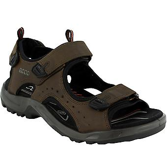 Ecco Mens Andes II Outdoor Trail Walking Hiking Sandals Shoes - Brown