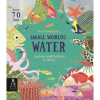 Small Worlds Water by Lily Murray & Illustrated by Lara Hawthorne